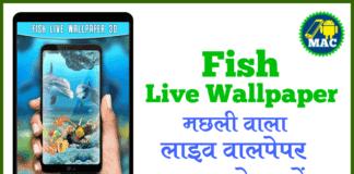 machli-fish-wala-wallpaper-download